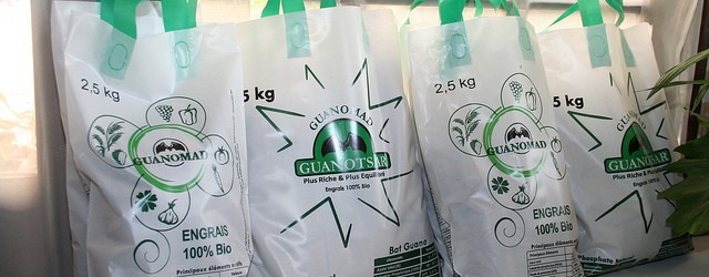 Malagasy company Guanomad has won over the local market with its organic fertilisers made from bat guano (excrements) and expanded its reach to Europe. Next, Africa. Read the full story […]